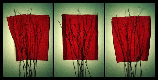 Red Panels Triptych